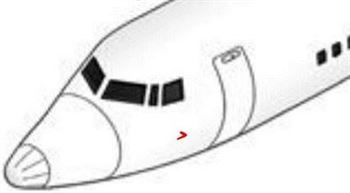 Picture of Pitot cover- Small